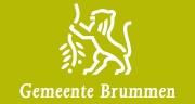 Logo - Brummen